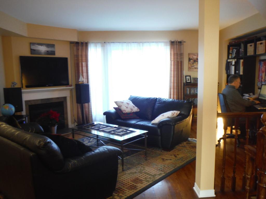 Living room, library/workstation